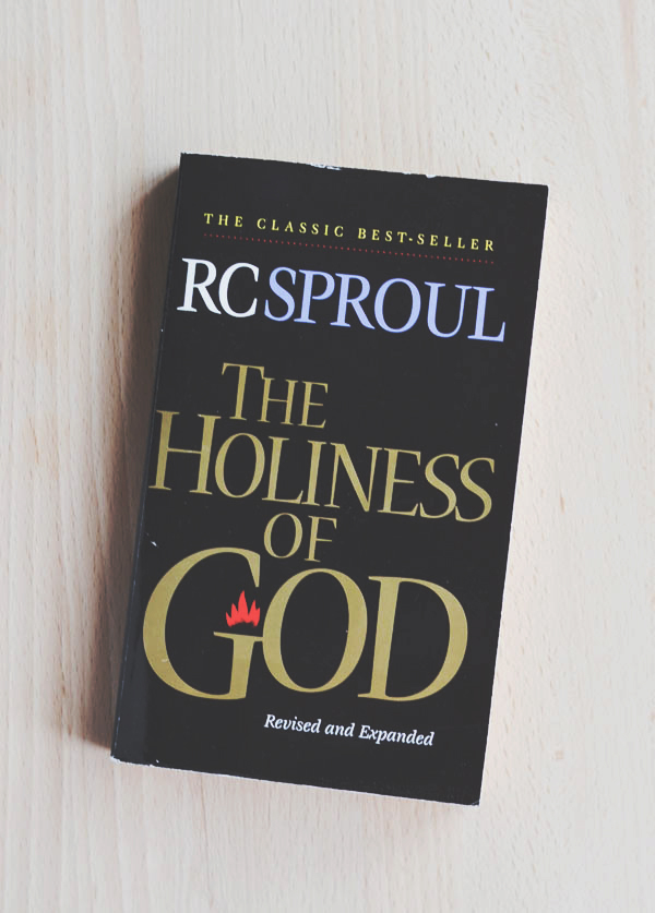 THE HOLINESS OF GOD from Rachel Schultz copy