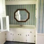 THE MASTER BATHROOM PLANS