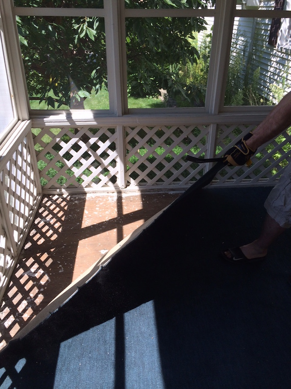 REMOVING CARPET FROM THE SUNROOM from Rachel Schutlz