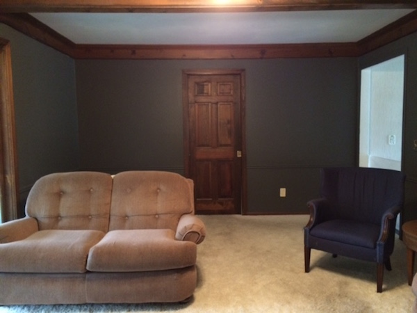 PAINTING THE LIVING ROOM DARK GRAY from Rachel Schultz 3