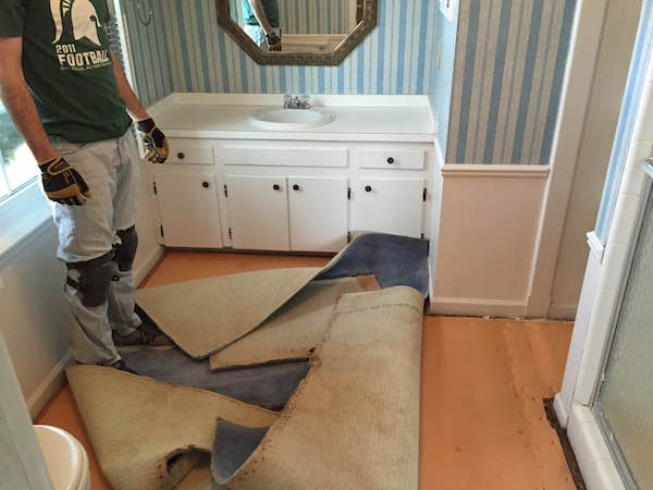 THE MASTER BATHROOM CARPET from Rachel Schultz 3