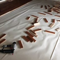 STARTING WOOD FLOORS IN LIVING ROOM from Rachel Schultz 2