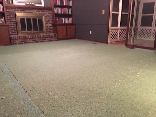 STARTING WOOD FLOORS IN LIVING ROOM from Rachel Schultz 5