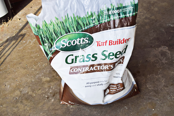 planting-grass-seed-4-copy