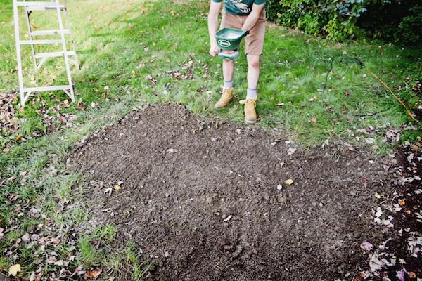 planting-grass-seed-copy