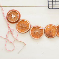 WINTER ORANGE GARLAND-2